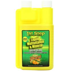 1st Step for Energy Liquid Multi-Vitamin and Mineral