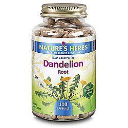Nature's Herbs Dandelion Root