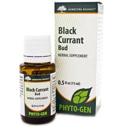 Genestra Black Currant Bud
