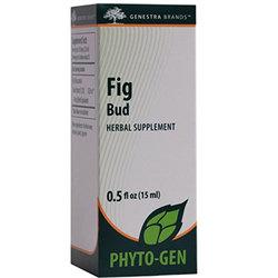 Genestra Fig Bud
