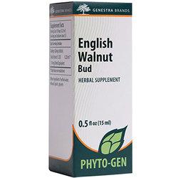 Genestra English Walnut Bud
