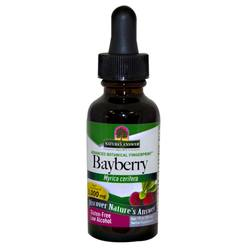Nature's Answer Bayberry Bark