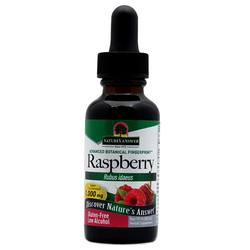 Nature's Answer Raspberry Leaf Organic Alcohol Extract