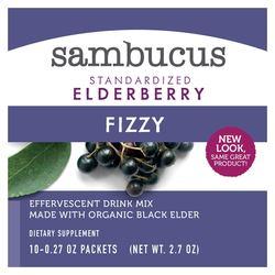 Nature's Way Sambucus Elderberry Fizzy Packets