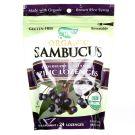 Nature's Way Organic Sambucus