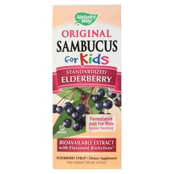 Nature's Way Sambucus for Kids Syrup