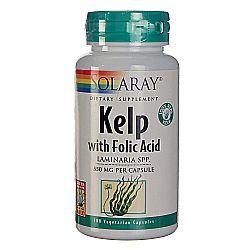 Solaray Kelp