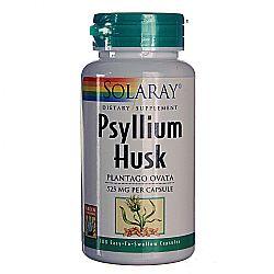 Solaray Psyllium Husk