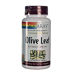 Solaray Olive Leaf Extract 22-