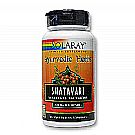 Solaray Shatavari Extract