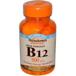 Sundown Naturals High Potency B-12