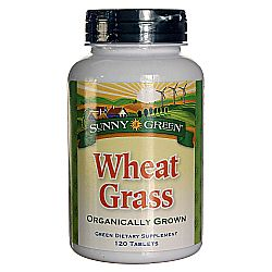 Sunny Green Wheat Grass