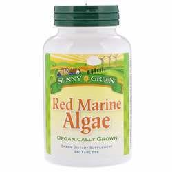 Sunny Green Red Marine Algae